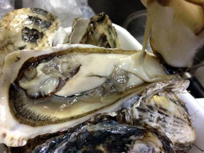 殻付き生牡蠣1