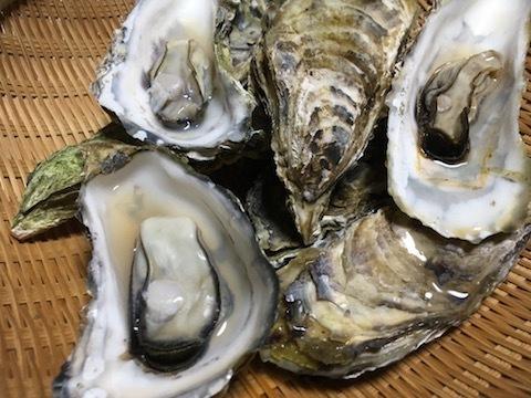 サロマ湖産の殻付き生牡蠣10